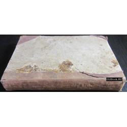 Карнеев Е.В. Священные песнопения древнего Сиона, или стихотворное переложение псалмов, составляющих Псалтирь. 1863 г.